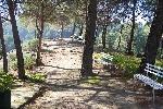 Camping Parque Ardales Camping Camping Parque Ardales