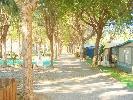Camping Playa Granada Camping Camping Playa Granada