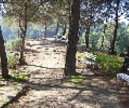 Camping Parque Ardales Camping o bungalow Camping Parque Ardales